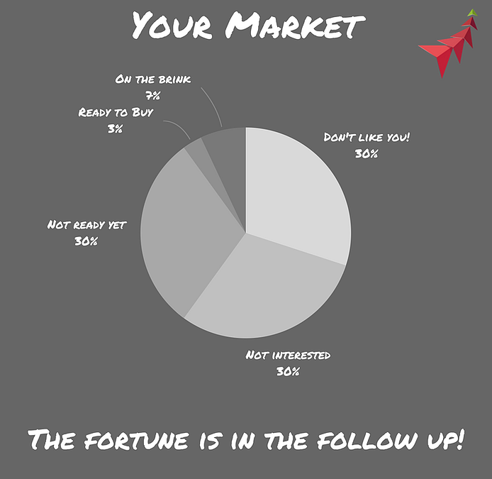 What your Potential Market Looks Like.